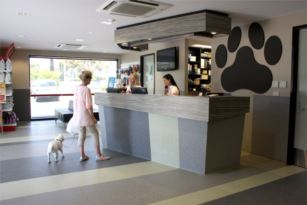 expert friendly and affordable pet care for oakleigh pet owners